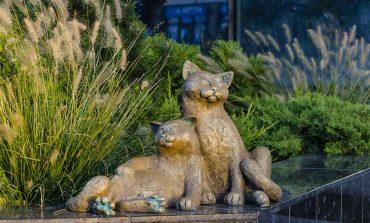 Возле Привоза установили очередную скульптуру одесских котов (фото)