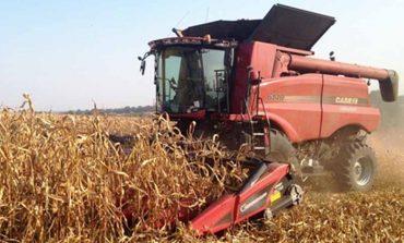 В Болградском районе завершают уборку зерновых и технических культур
