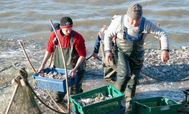 Измаильский район: в озеро Китай выпустили 5 тонн мальков рыбы